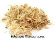 Astralagus Membranaceus for chlamydia