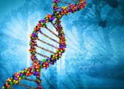 genetics panic disorder