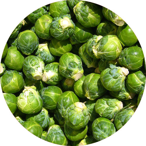 brussels-sprouts-to-prevent-bone-loss