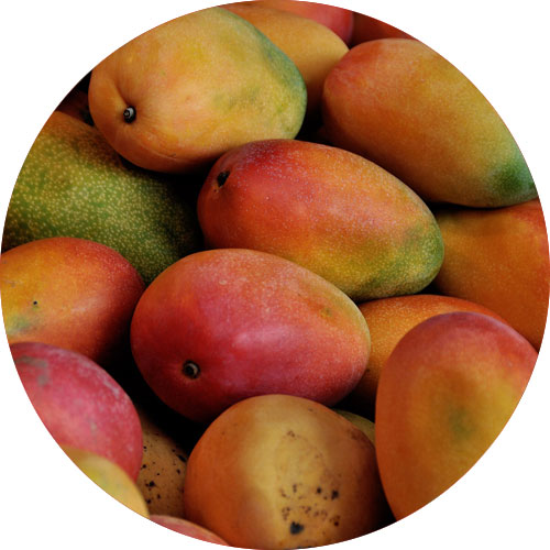 mangoes-provide-close-to-200-milligrams-of-potassium