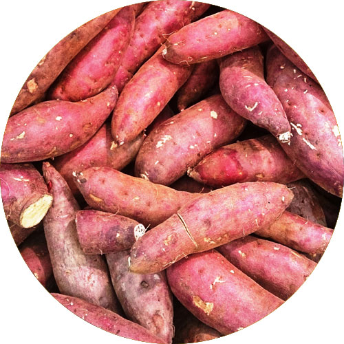 sweet-potato-boosts-heart-function-and-muscle-contraction