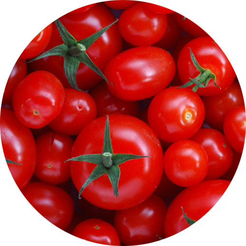 tomato-products-are-a-rich-source-of-potassium