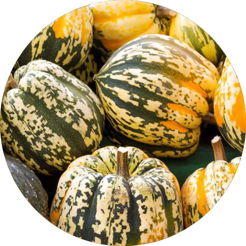 winter-squash-are-high-potassium-foods
