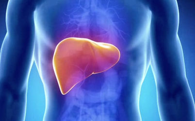 Liver-Toning-Herbs