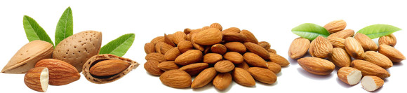 almonds the highest magnesium rich foods