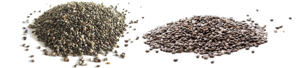 chia seeds for insulin sensitivity
