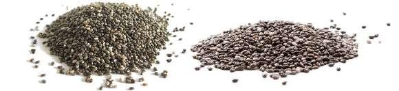 chia seeds for insulin sensitivity