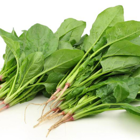spinach-for-healthy-brain-fuction.