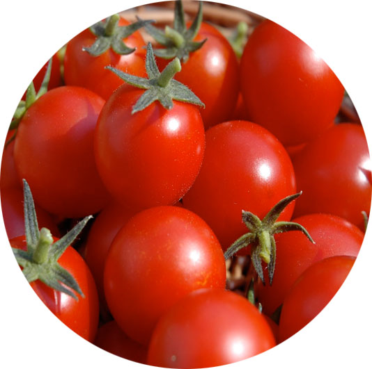 tomatoes-cure-endometrial-cancer