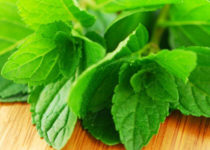 peppermint-for-leaky-gut-syndrome