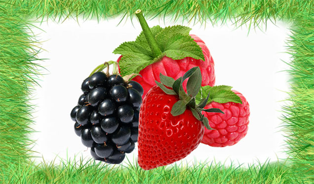 berries-for-muscle-and-arthritis-pain