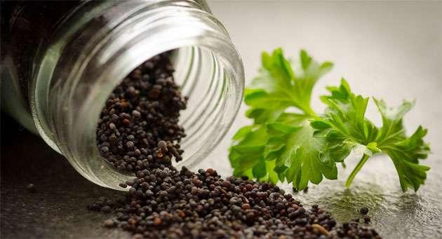 black-pepper-health