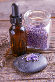lavender-oil-heals-acne-bruises-fine-lines-and-wrinkles