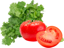 cilantro-and-tomatoes-reduce-risk-for-cancer-and-heart-disease