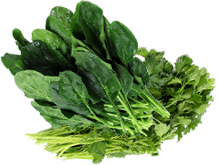 spinach-and-parsley-good-for-anti-aging
